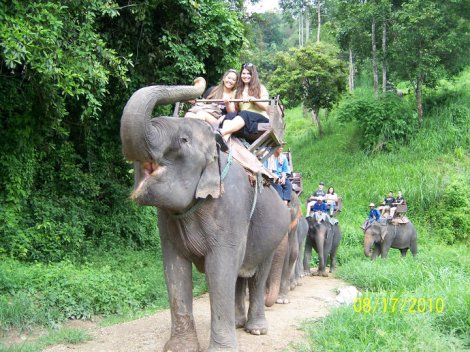 Riding and elephant in Thailand with my friends.