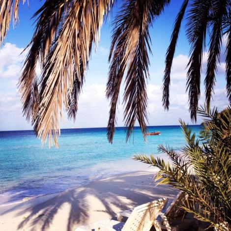 I took this on the beach in Curacao last Spring Break! Less than $150 r/t for tickets to Curacao from Venezuela!