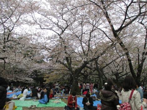 Seasonal festival