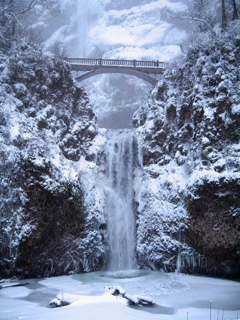 Multnomah Falls (my favorite waterfall not too far from my mom's house) covered in ice