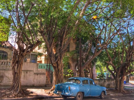 old-car-in-havana