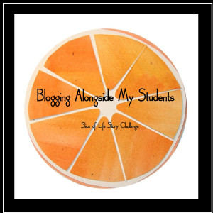 Blogging with my students