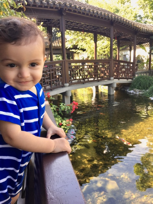 S at Chinese Gardens